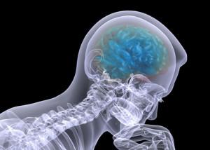 Упражнения-для-мозга